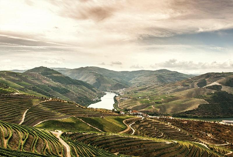 Douro Valley - Porto - Portugal